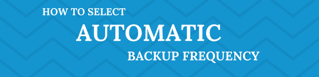 Spinbackup how to select automatic backup frequency